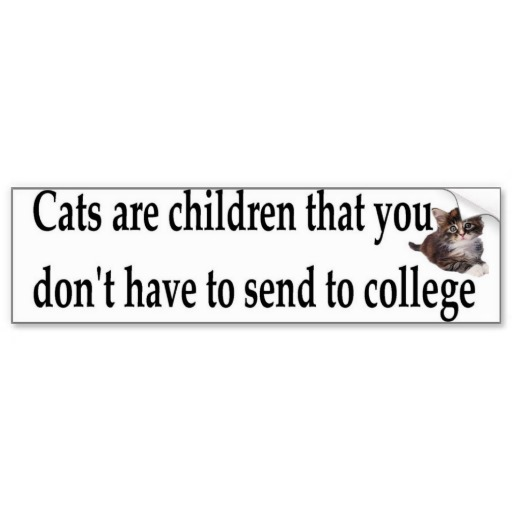 CATS ARE CHILDREN
