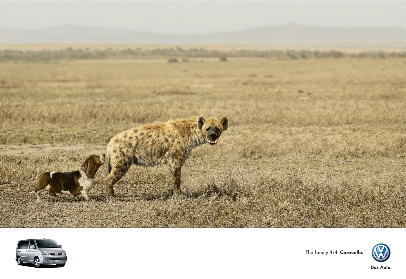 Funny animals ads -  volkswagen (dog hyena)