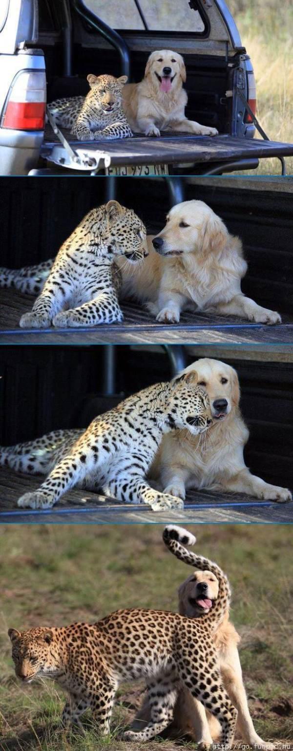 cutest-pictures-friends