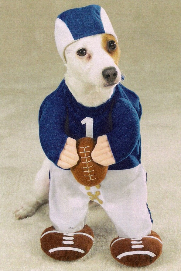dog-clothes-quarterback