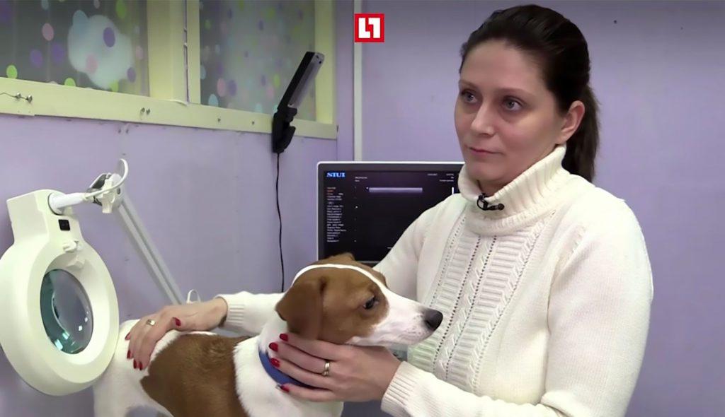 Marina Esmat with the dog