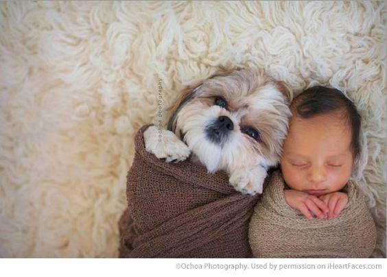 baby and dog sleeping
